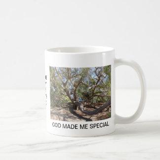 Sprawling Tree Near Santa Barbara on Coast Basic White Mug