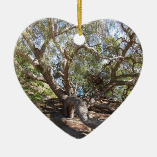 Sprawling Tree Near Santa Barbara on Coast Double-Sided Heart Ceramic Christmas Ornament