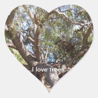 Sprawling Tree Near Santa Barbara on Coast Heart Sticker