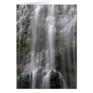 Spray Falls, Mt. Rainier National Park Greeting Card