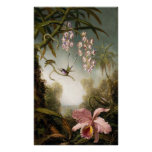 Spray Orchids with Hummingbird Poster