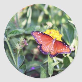 Spread Your Wings, S Cyr Round Sticker