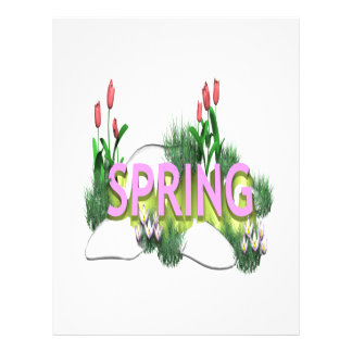 Spring 11 custom flyer