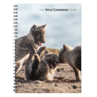 Spring - Arctic Fox Notebook