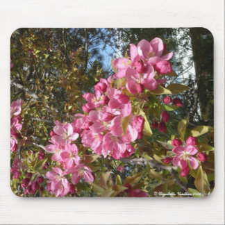 spring at colby community college mouse pad