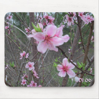 Spring at the farm DJ 06 Mouse Mat