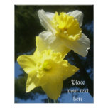 Spring beautiful daffodils customisable poster