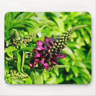 Spring Bloom Mouse Mat