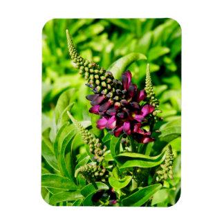 Spring Bloom Rectangular Photo Magnet