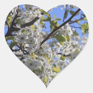 Spring Blooms Heart Sticker