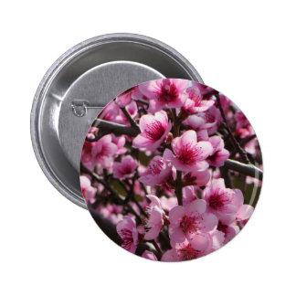 Spring Blossoms 6 Cm Round Badge