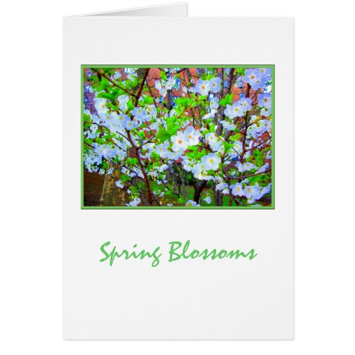 'Spring Blossoms'  Blank Greeting Card