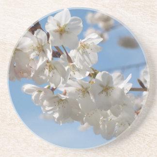 Spring Blossoms Coaster