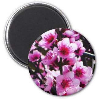 Spring Blossoms Magnet