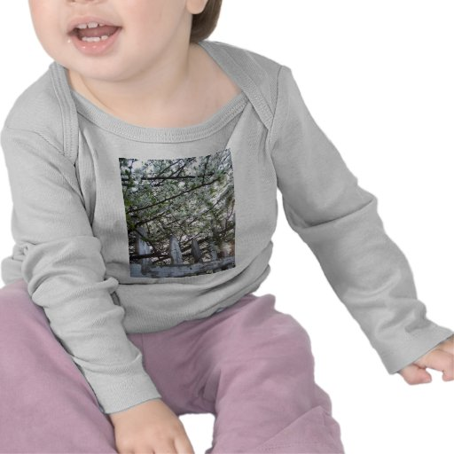 Spring Blossoms Tee Shirts