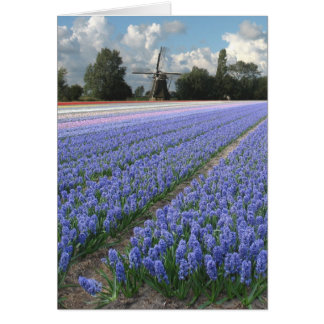 Spring Blue Hyacinth Flowers Field Windmill Card