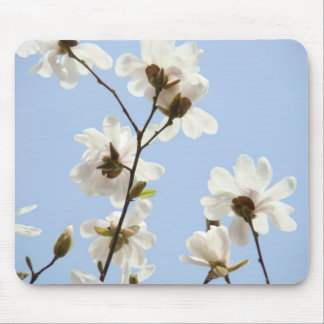 Spring Blue Sky White Magnolia Flowers mouse pad