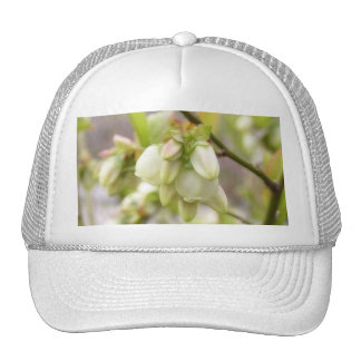 Spring Blueberry Flowers Trucker Hat