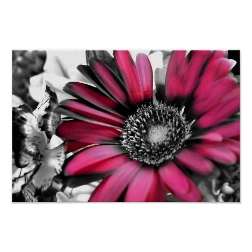 Spring Bouquet in Black & White Posters