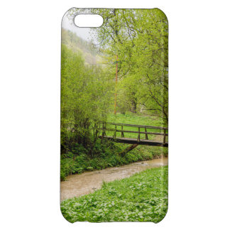 Spring Bridge, Lush Green Landscape Photograph Case For iPhone 5C