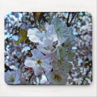 Spring Brooklyn Botanical Gardens Mouse Pad