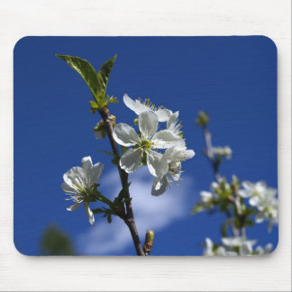 Spring Buds Mouse Mat