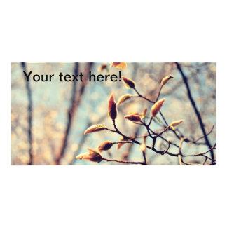 Spring buds customized photo card