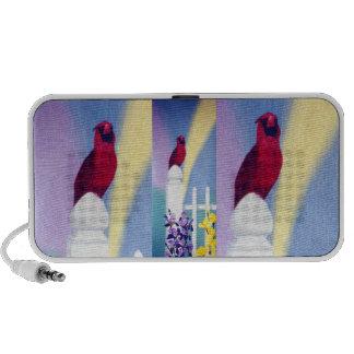 Spring Cardinal Speaker