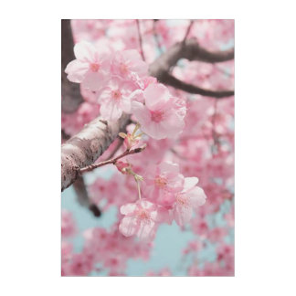 Spring Cherry Blossom Nature Acrylic Wall Art