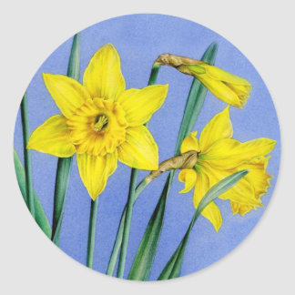Spring daffodil yellow art painted flower sticker