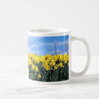 Spring daffodils, Shrewsbury, Shropshire, England Coffee Mug