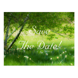 Spring Daffodils Wedding Save The Date Postcard