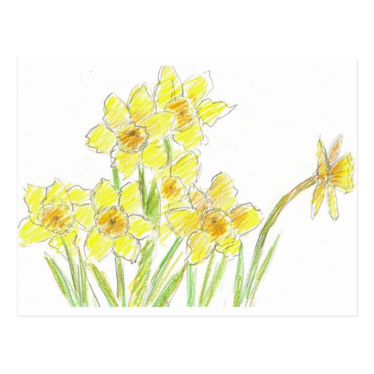 Spring Daffodils Yellow Watercolor Flowers Postcard
