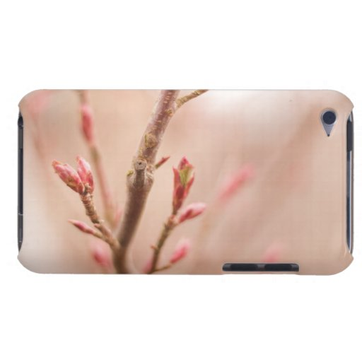 Spring dreams barely there iPod covers