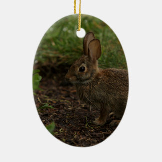 Spring/Easter: Chick, Rabbit Christmas Ornament