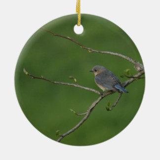 Spring/Easter: Male Bluebird, Female Bluebird Christmas Ornament