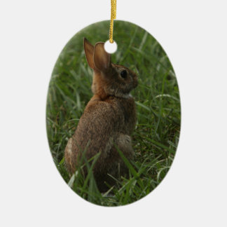 Spring/Easter ornament: rabbit and chick Christmas Ornament