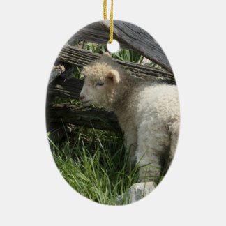 Spring/Easter: Two lambs same grass, One by fence Ceramic Oval Decoration