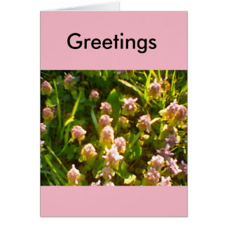 Spring Favourites Card
