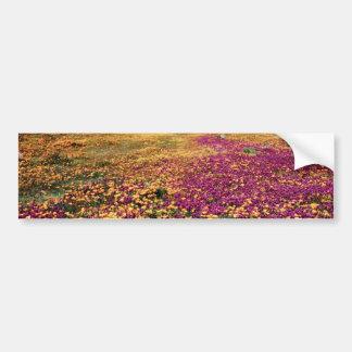 Spring fields of blooming wildflowers  flowers bumper sticker