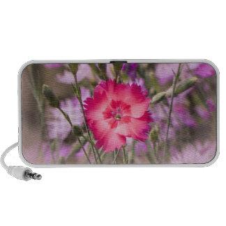 Spring Floral Portable Speakers