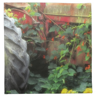 Spring flowers adorn an old tractor. napkin