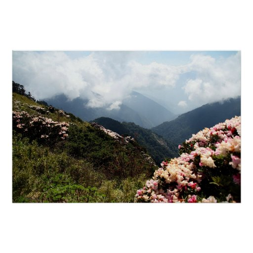 Spring-Flowers-Adorned Mountains Poster
