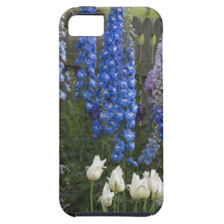 Spring flowers along a garden path, Georgia 2 iPhone 5 Case