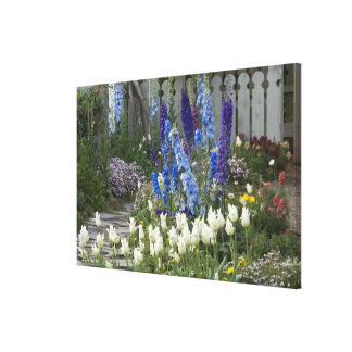 Spring flowers along a garden path, Georgia Stretched Canvas Print