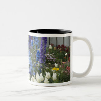 Spring flowers along a garden path, Georgia Two-Tone Coffee Mug