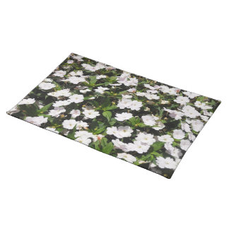 spring flowers american Placemat