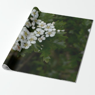 Spring flowers blossom . wrapping paper