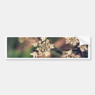 Spring flowers bumper sticker