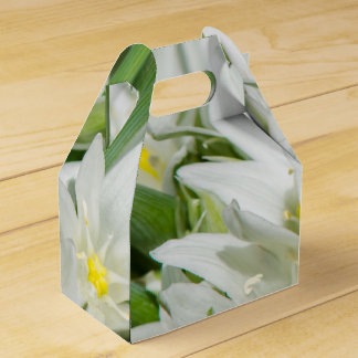 Spring flowers favour boxes